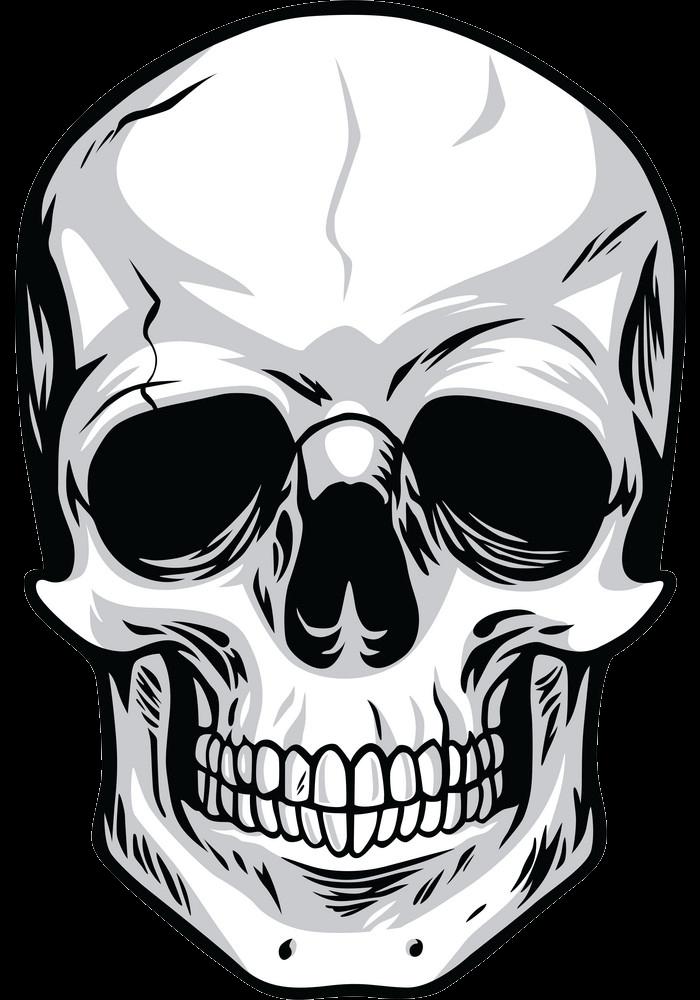 Skull clipart transparent