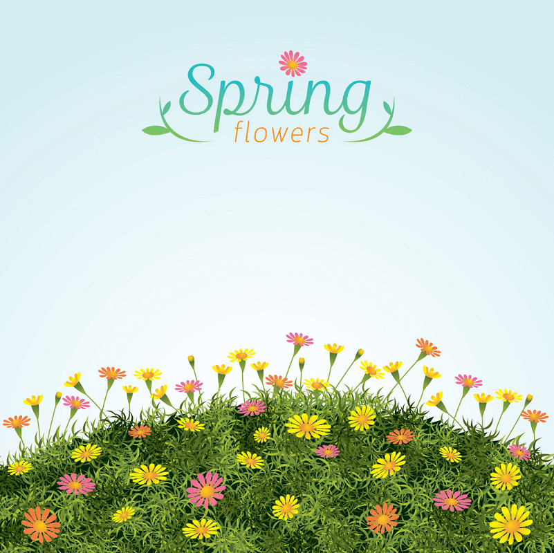 Flowers Spring Field clipart