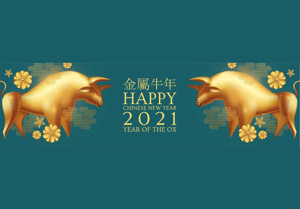 Happy New Year 2021 clipart 8