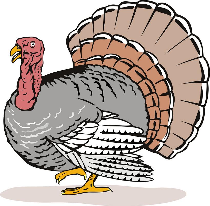 Retro Wild Turkey clipart