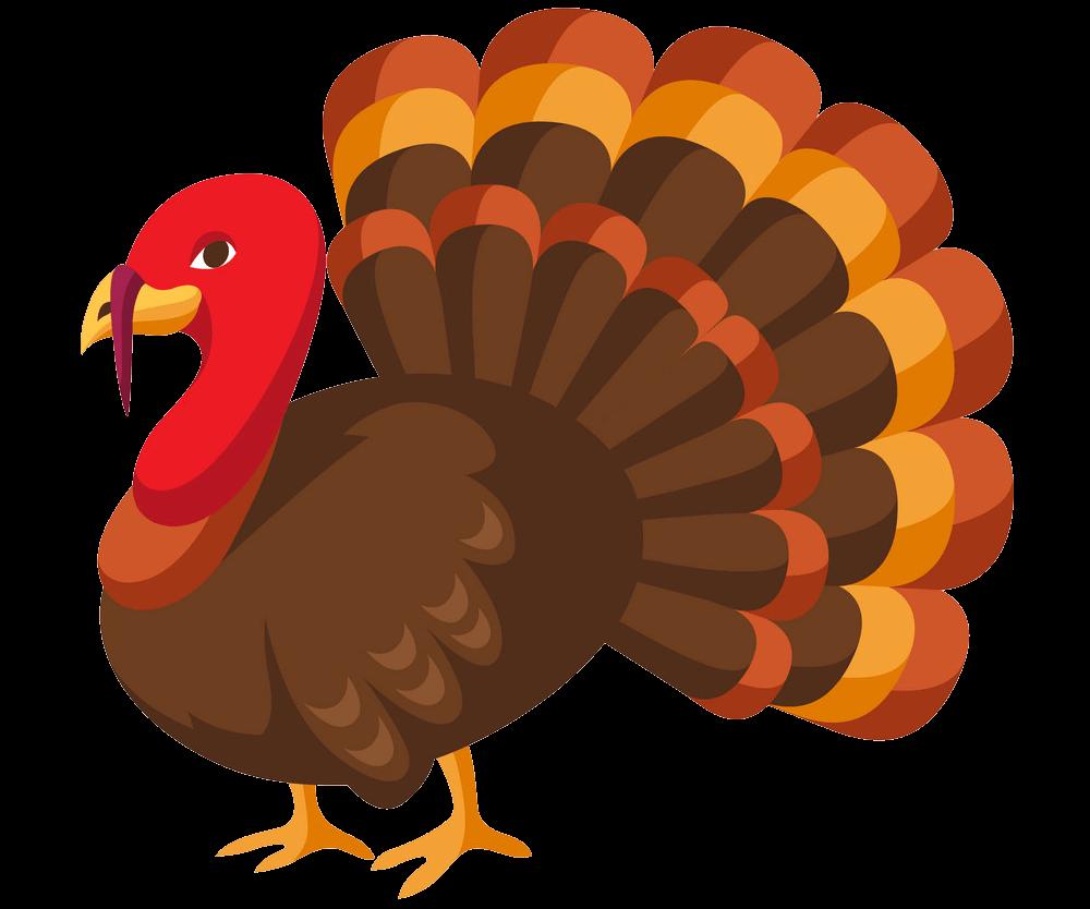 Thanksgiving Turkey clipart transparent