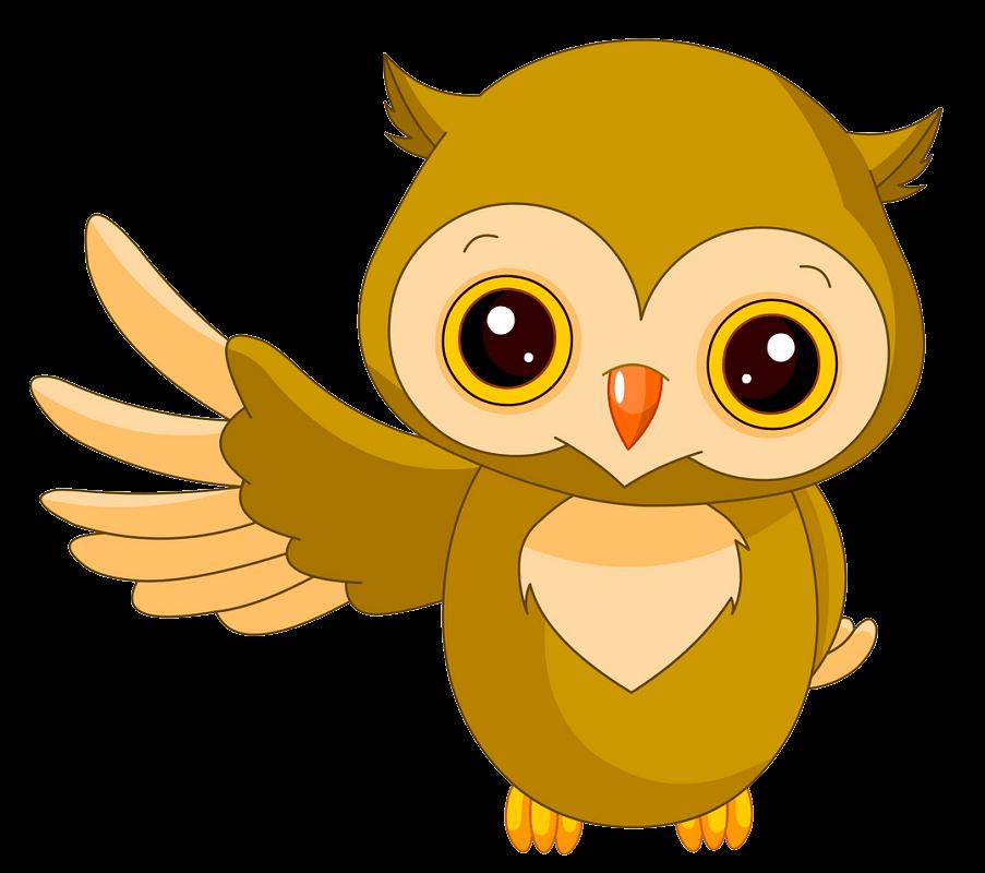 Adorable Owl clipart transparent