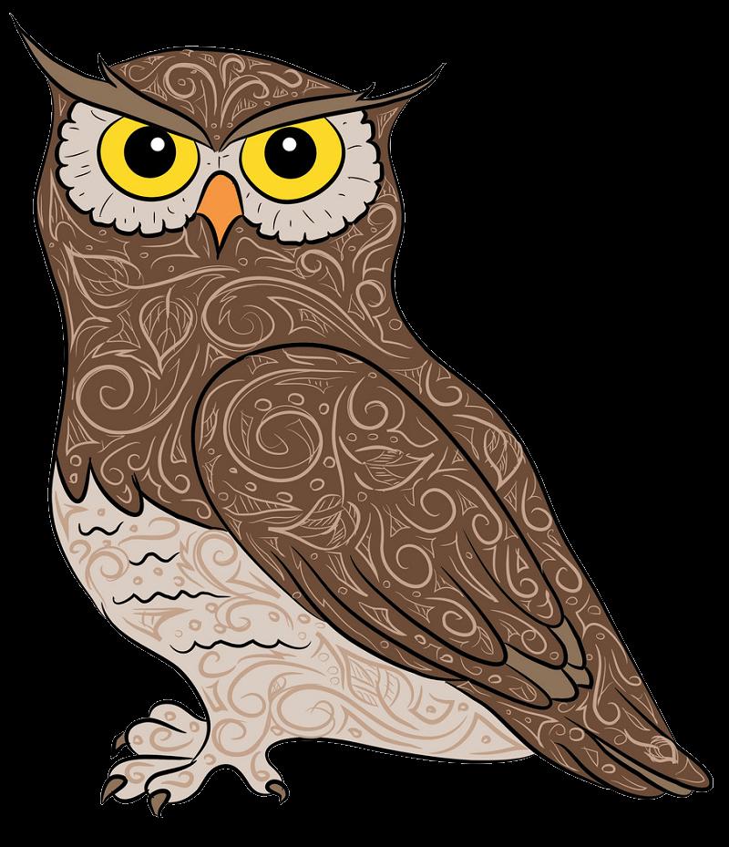 Amazing Owl clipart transparent