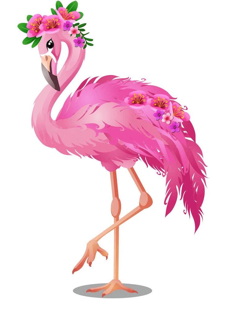 Beautiful Flamingo clipart