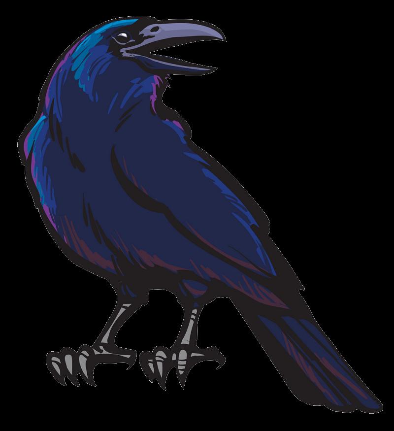 Black Crow clipart transparent