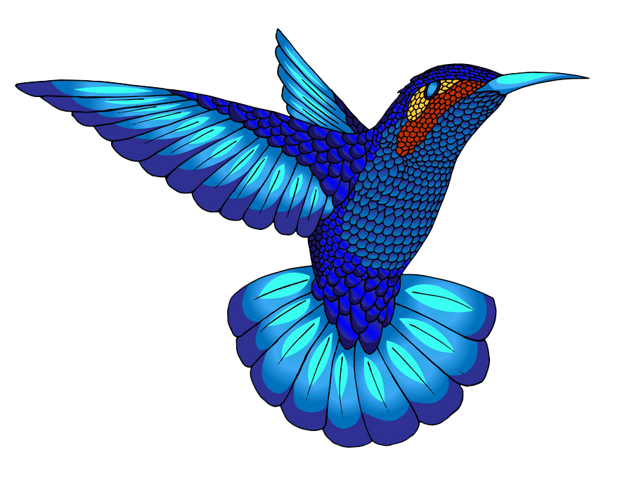 Blue Hummingbird clipart transparent