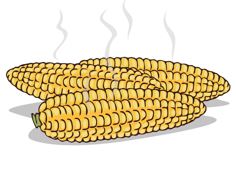 Boiled Corn clipart