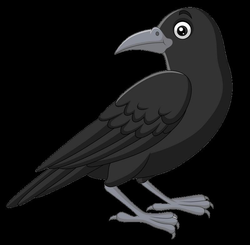 Cartoon Crow clipart transparent