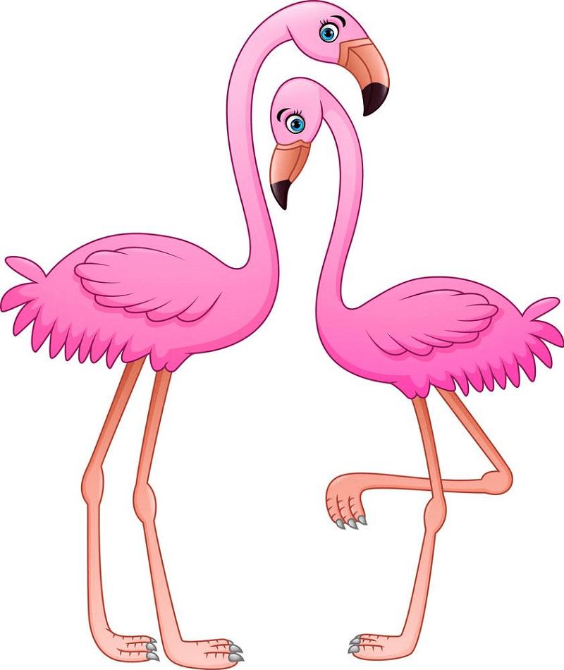 Cartoon Flamingos clipart