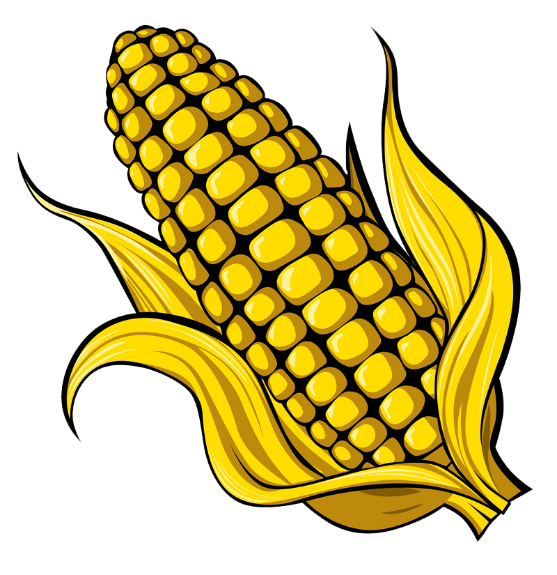 Corn clipart transparent 5