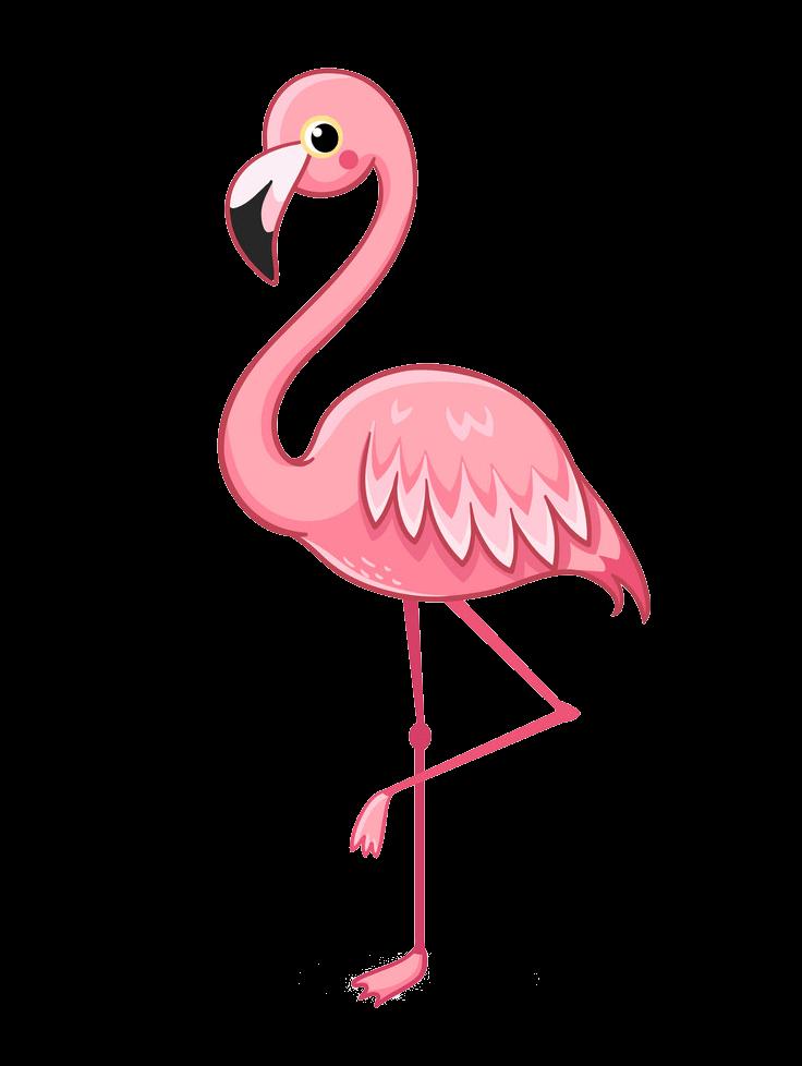 Cute Flamingo clipart transparent