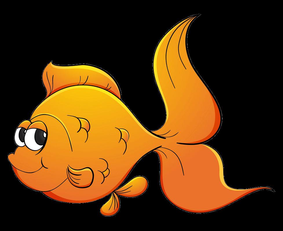 Cute Goldfish clipart transparent