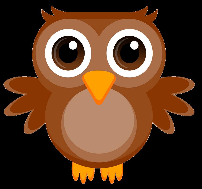Cute Owl clipart transparent