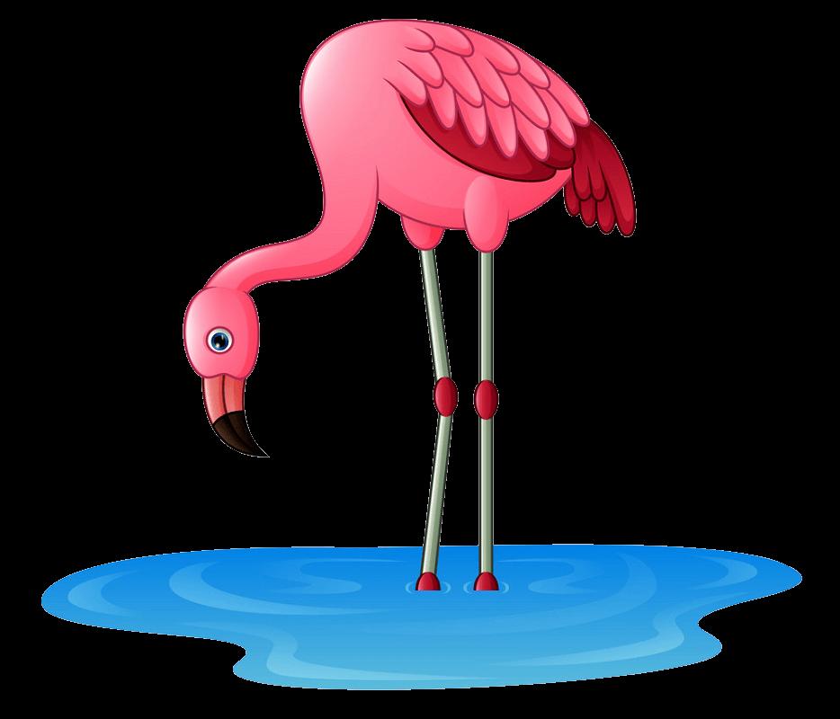 Flamingo clipart transparent 4
