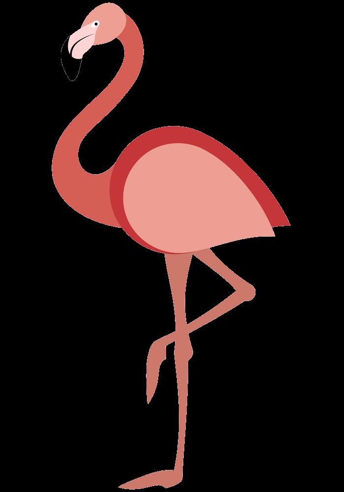 Flamingo clipart transparent