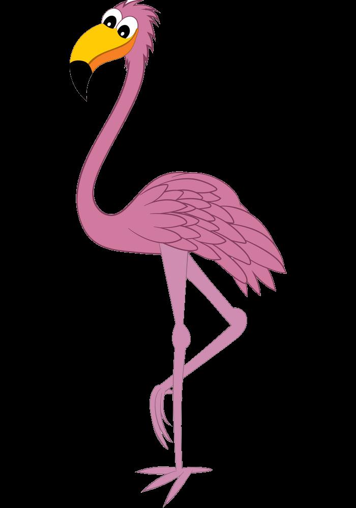 Funny Flamingo clipart transparent 1