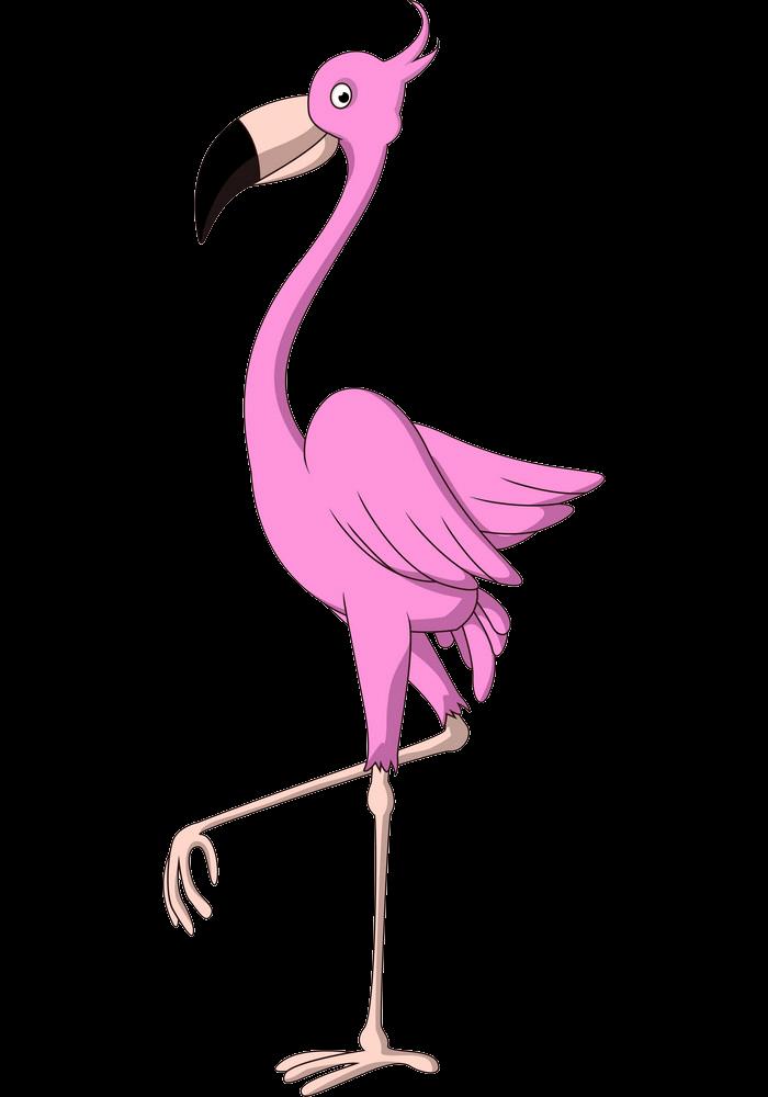Funny Flamingo clipart transparent