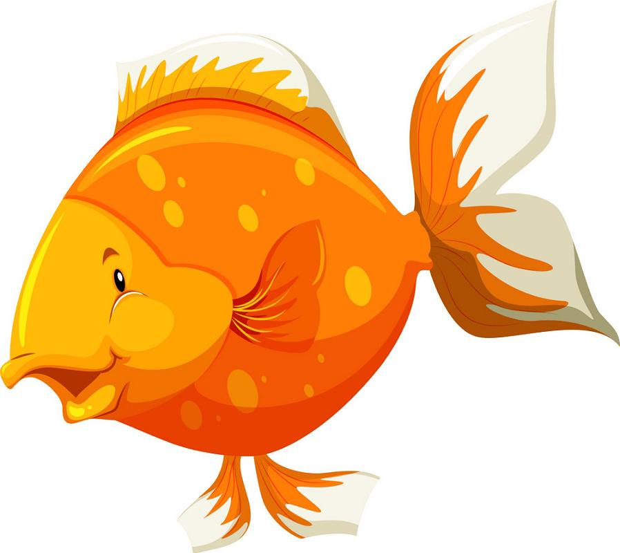 Funny Goldfish clipart