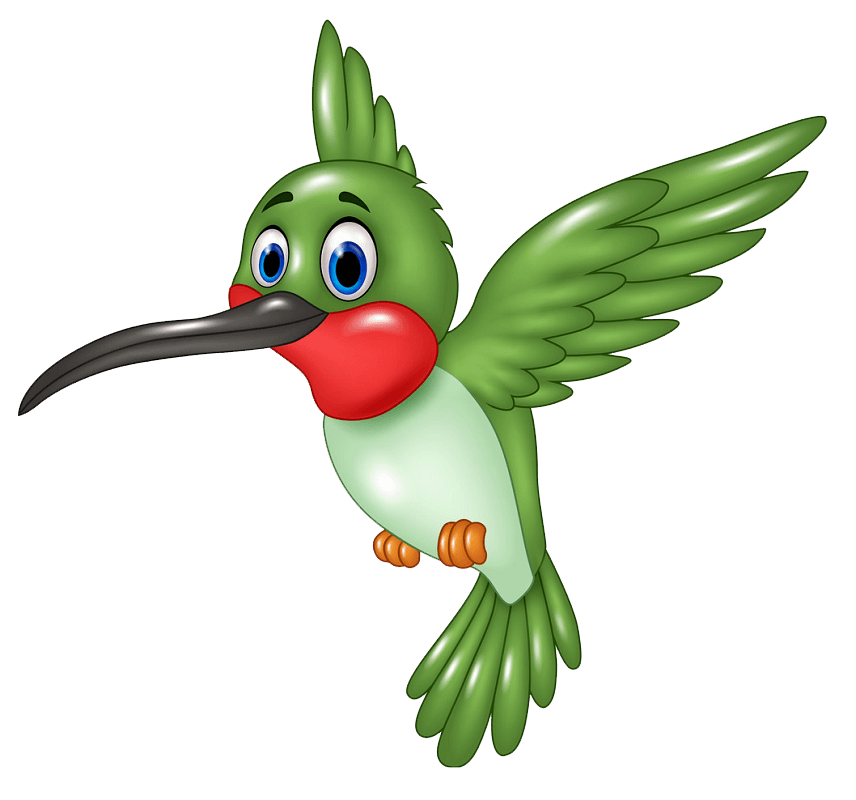 Funny Hummingbird clipart transparent