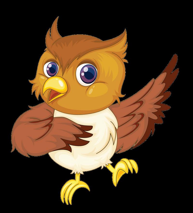 Funny Owl clipart transparent