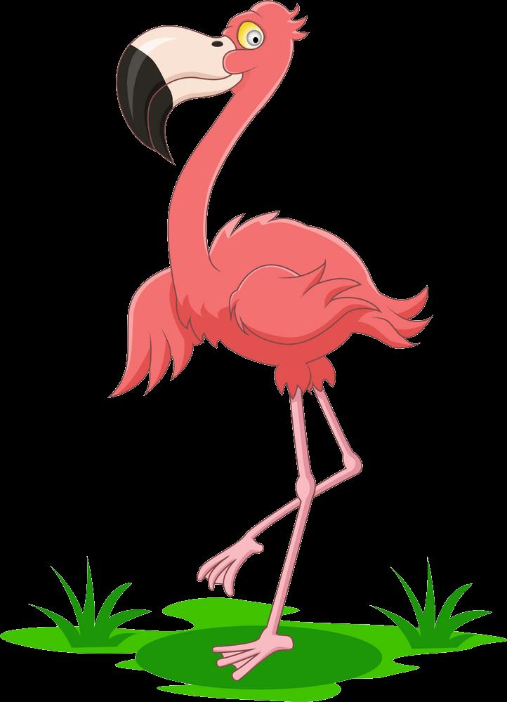 Happy Flamingo clipart transparent