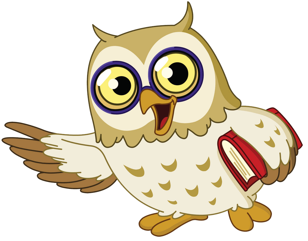 Happy Owl clipart transparent