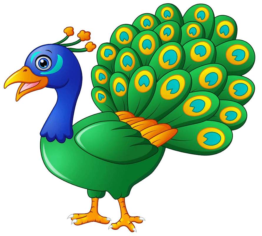Happy Peacock clipart transparent