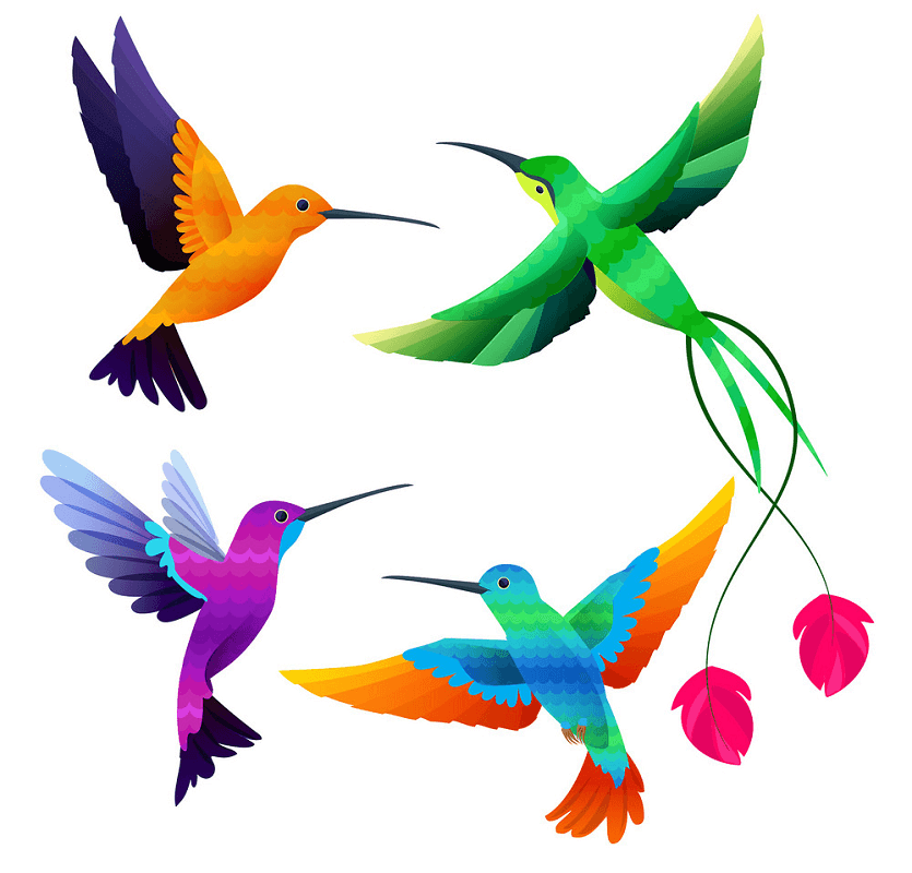 Hummingbirds clipart