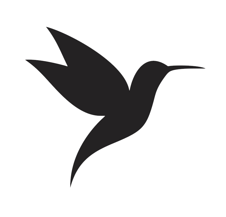Icon Hummingbird clipart transparent