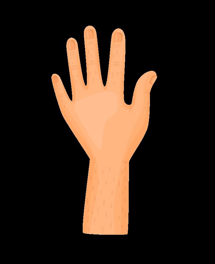 Left Hand clipart transparent