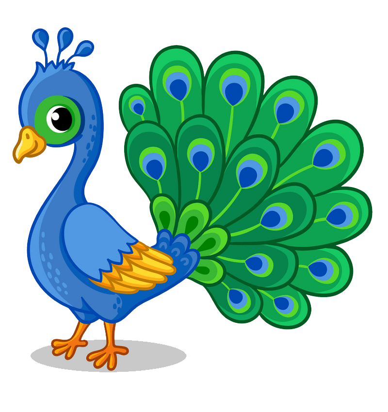 Little Peacock clipart transparent