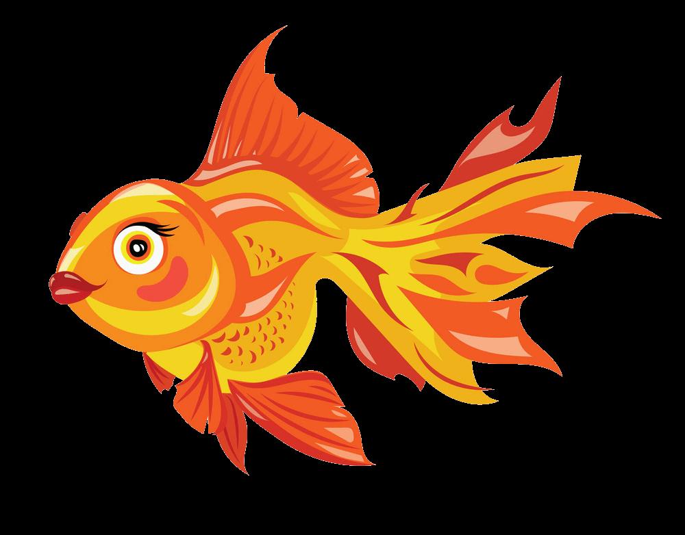 Lovely Goldfish clipart transparent