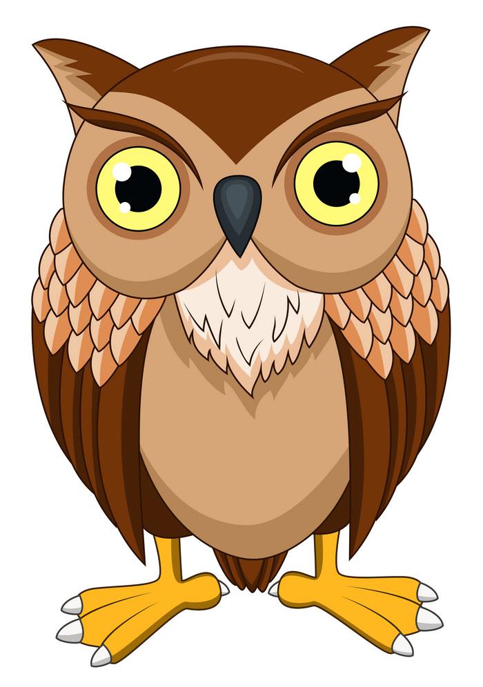 Owl clipart 1
