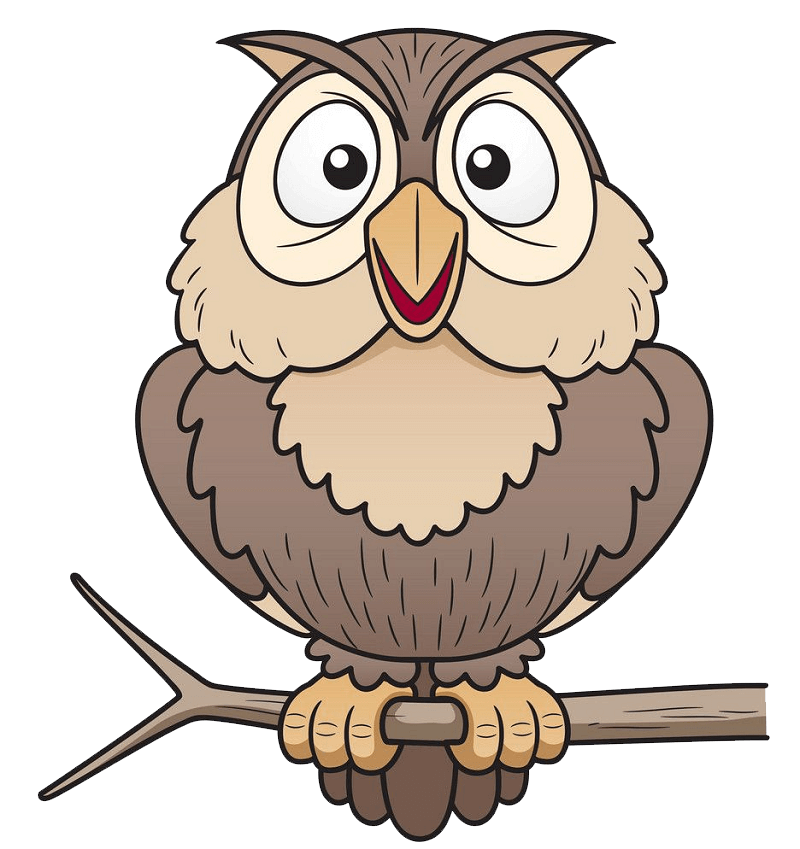Owl on a Branch clipart transparent