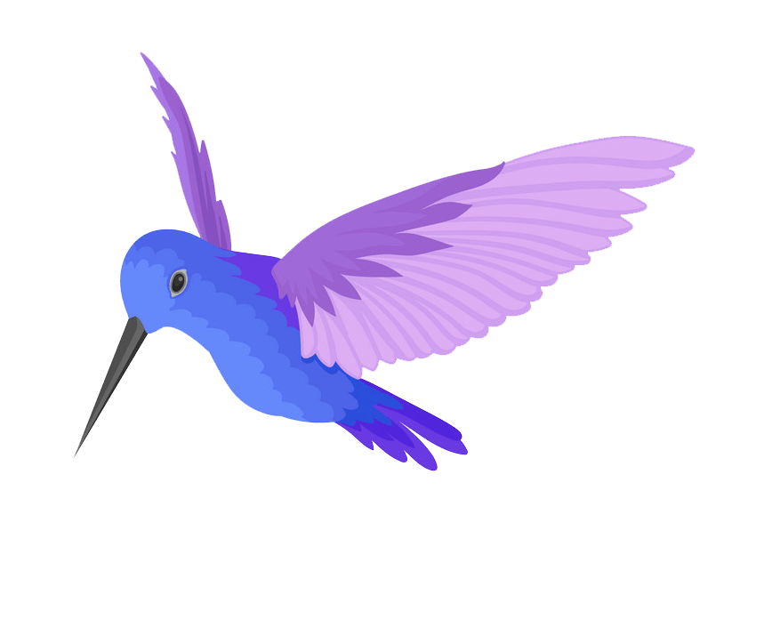 Purple Hummingbird clipart transparent