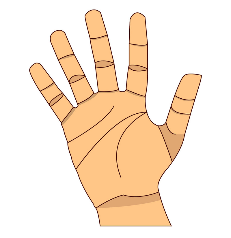 Right Hand clipart 2