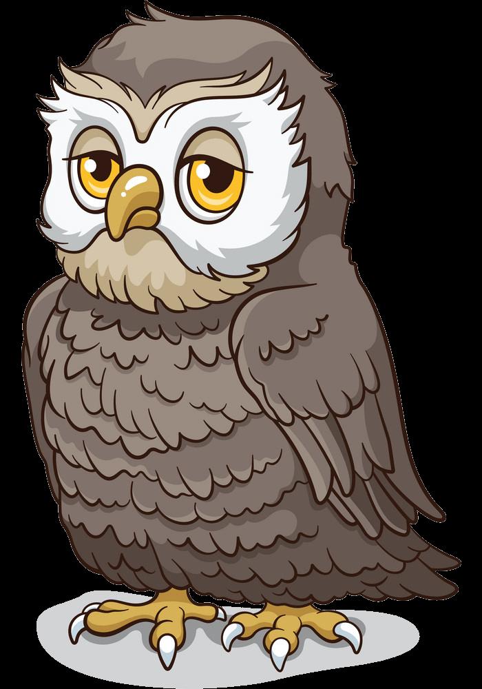 Sad Owl clipart transparent
