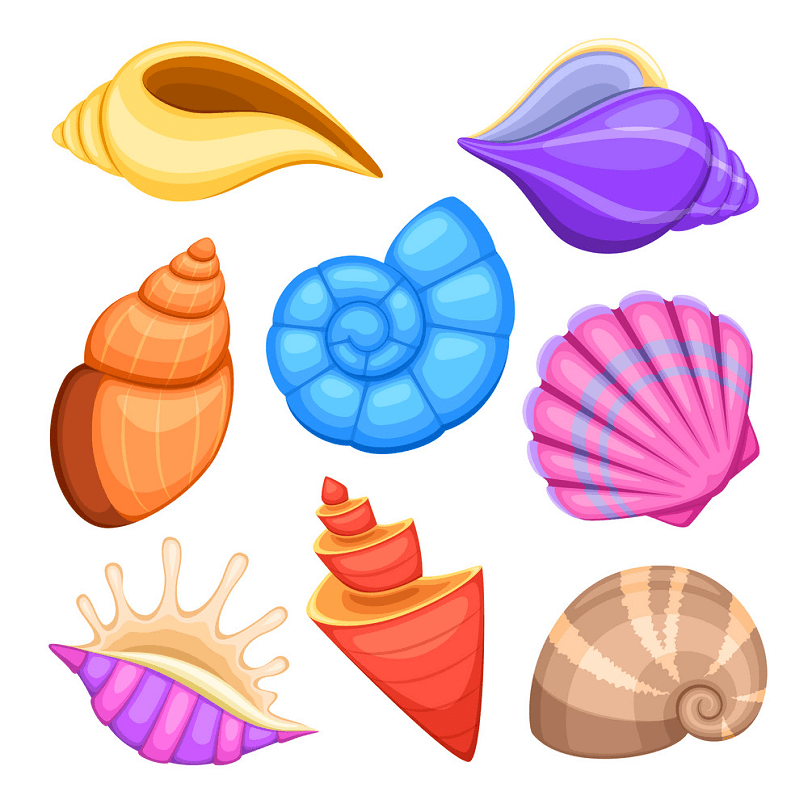 Seashell Clipart