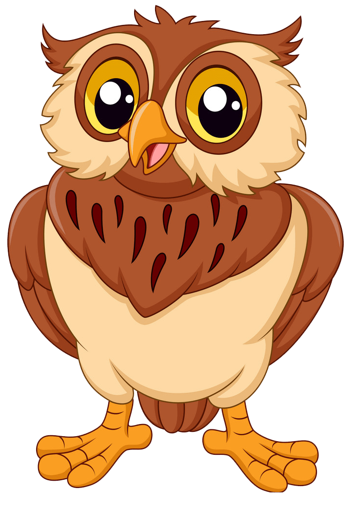 Smiling Owl clipart transparent