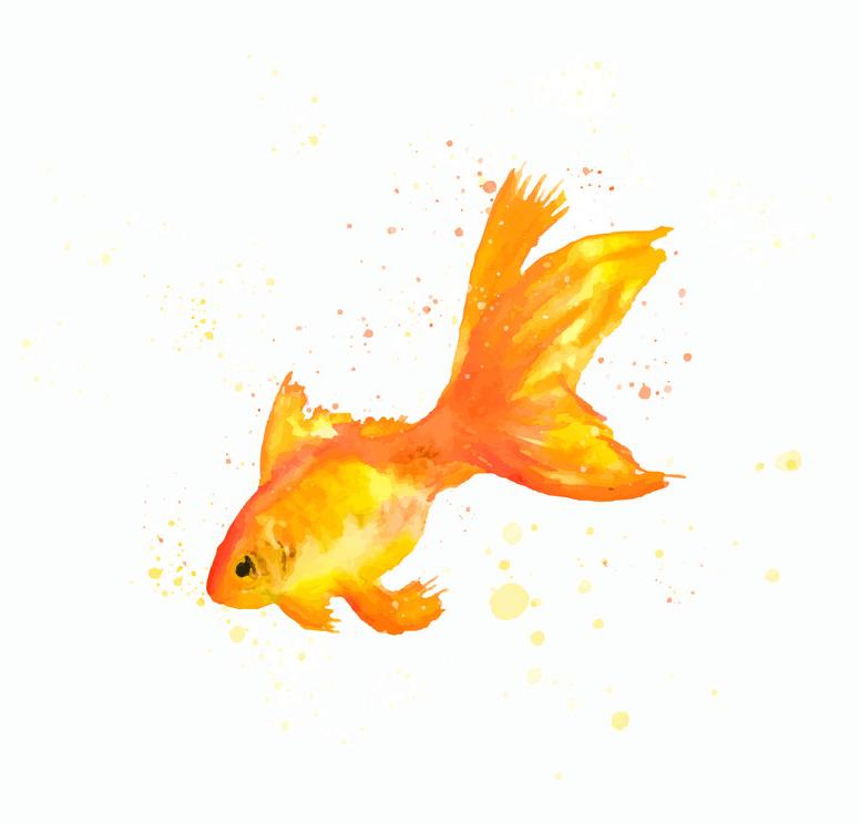 Watercolor Goldfish clipart