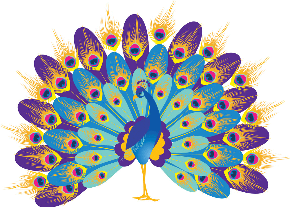 Wonderful Peacock clipart