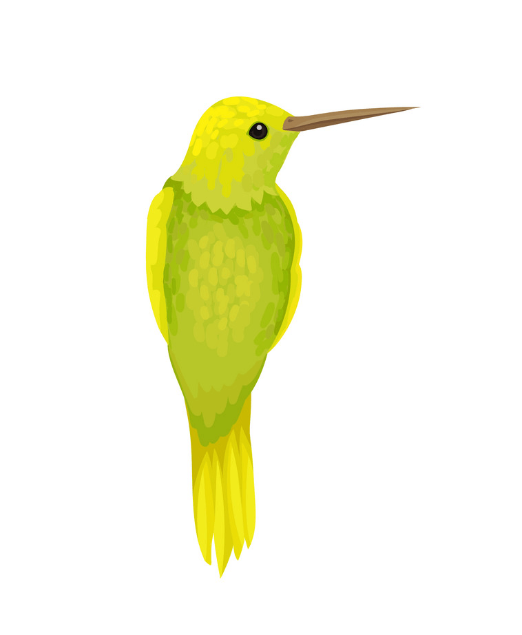 Yellow Hummingbird clipart