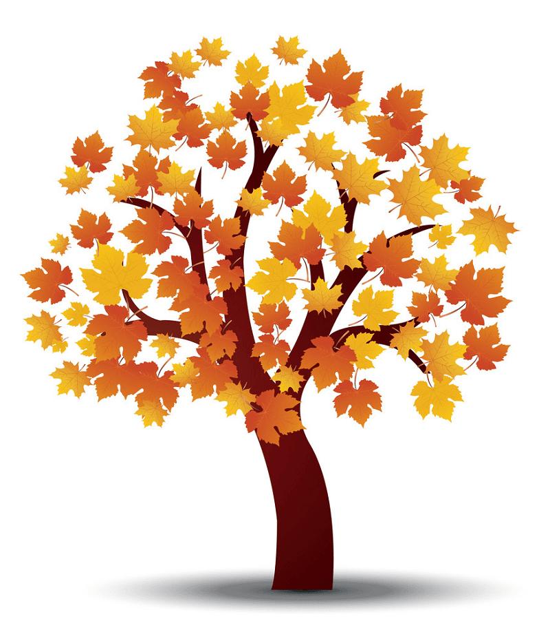 Autumn Tree clipart 1