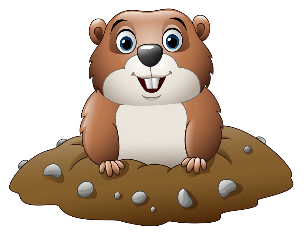 Cartoon Groundhog clipart transparent