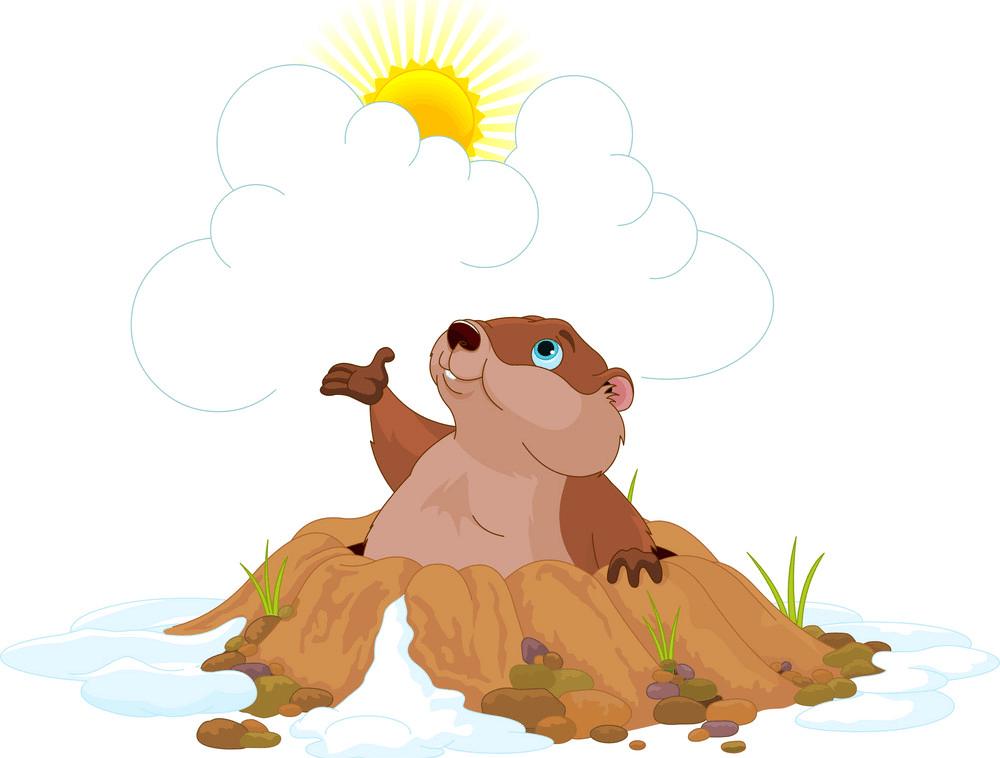 Cartoon Groundhog clipart