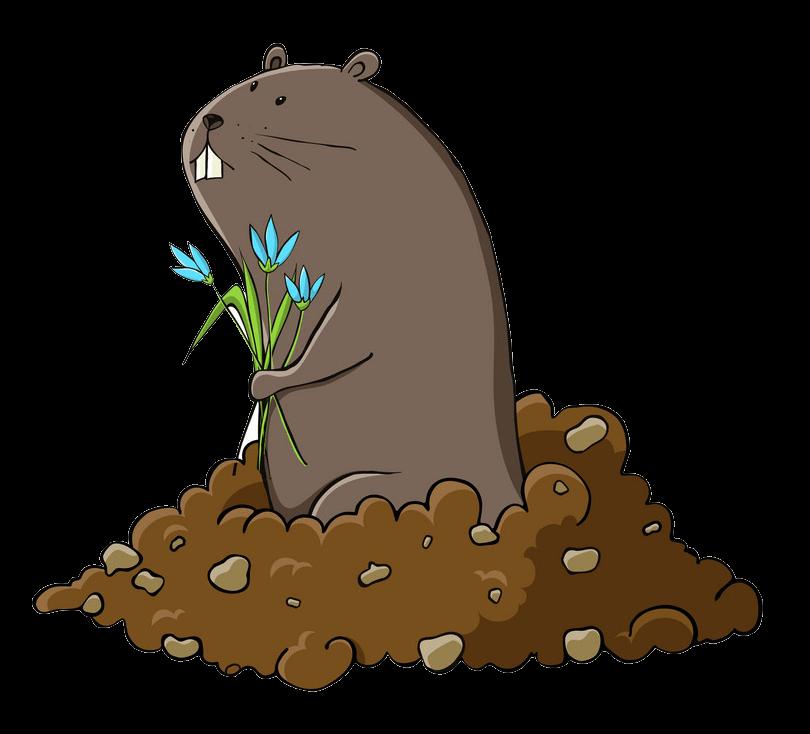 Groundhog clipart transparent 1