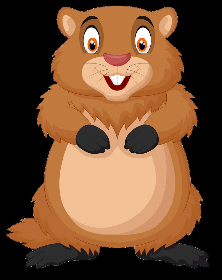 Smiling Groundhog clipart transparent