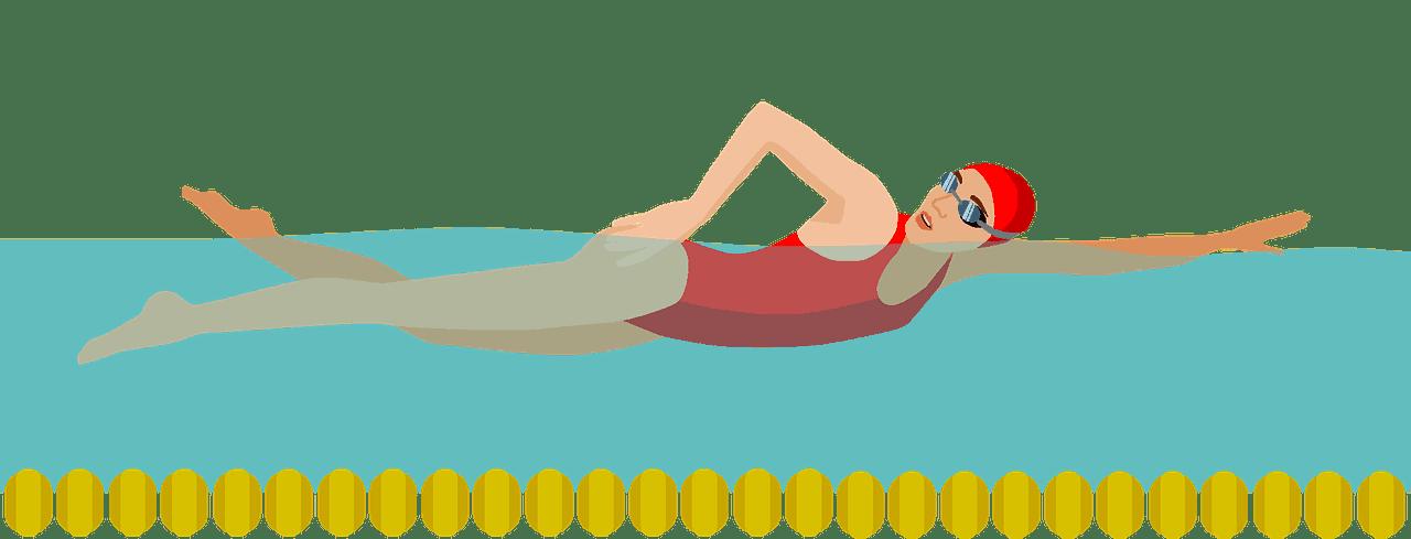Swimming clipart transparent