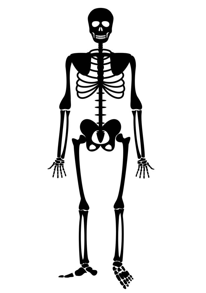 Black Skeleton clipart