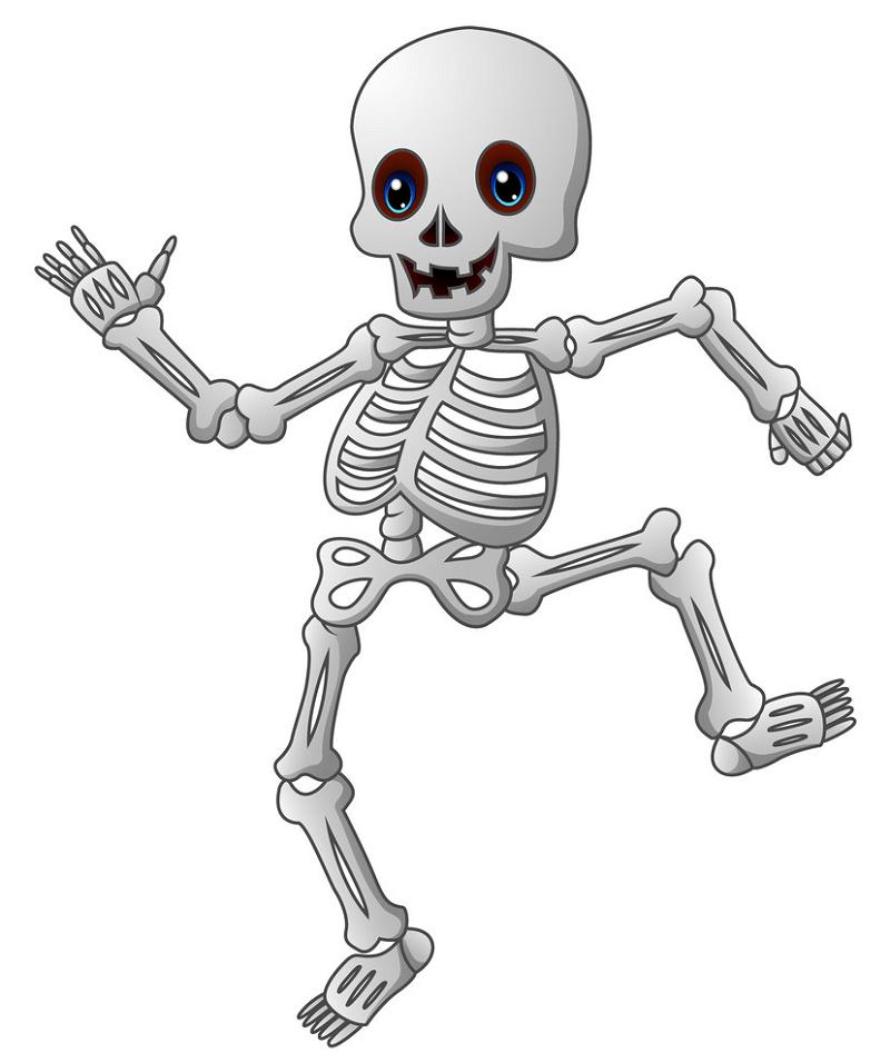 Cartoon Skeleton clipart
